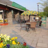 Porthmadog dog-friendly cafe, Wales