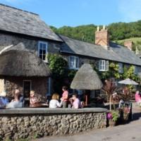 Devon coast path and dog-friendly country inn and B&B, Devon - devon dog-friendly pub and dog walk.jpg
