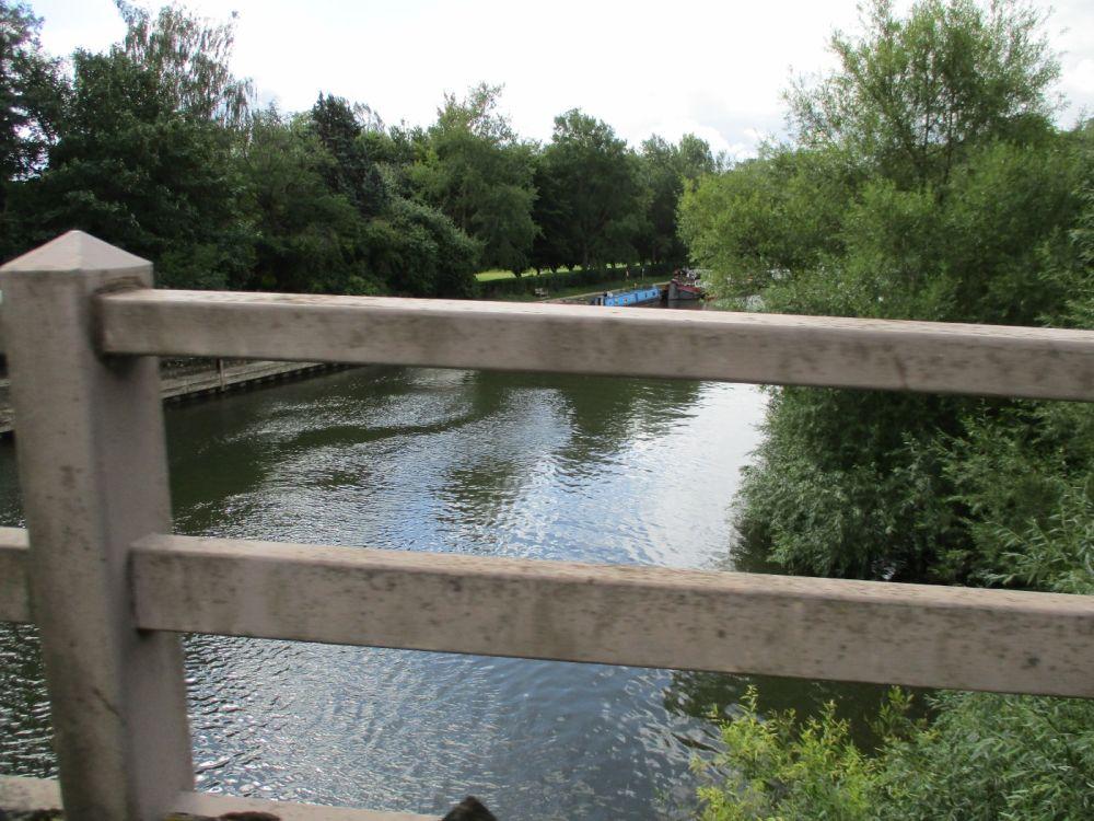 Goring dog-friendly pub and dog walk, Oxfordshire - Thames dog walk.JPG