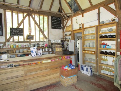 Wilderness Wood dog walks and cafe, East Sussex - Driving with Dogs