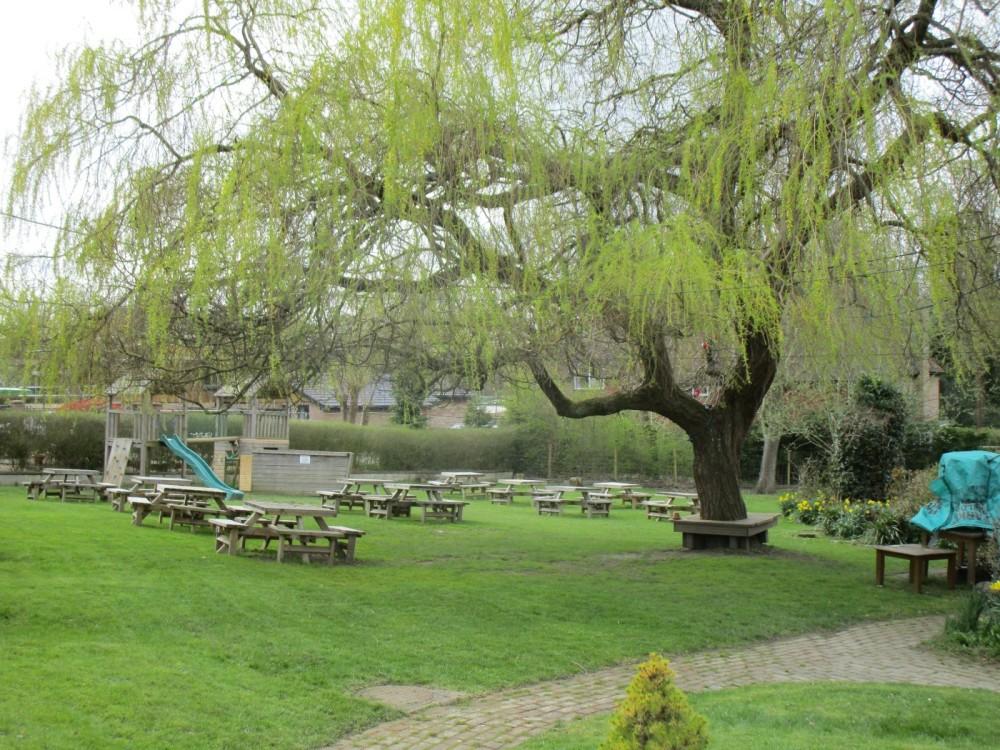 A22 dog-friendly pub with dog walk, East Sussex - Sussex dog-friendly pubs and dog walk.JPG