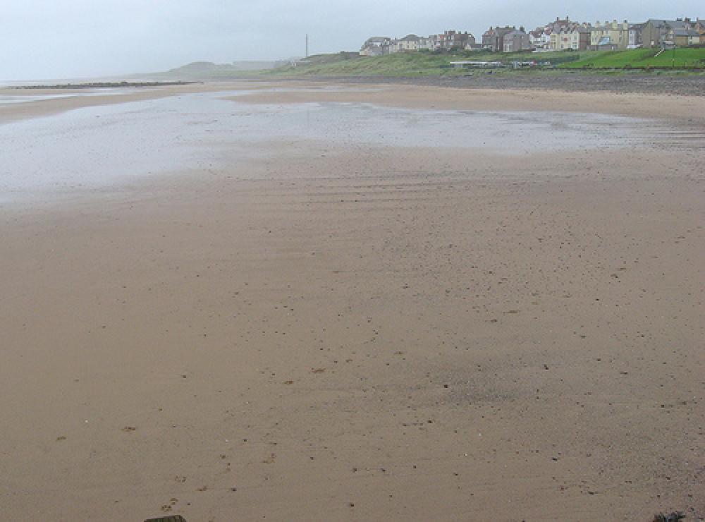 Seascale dog-friendly beach, Cumbria - Dog walks in Cumbria