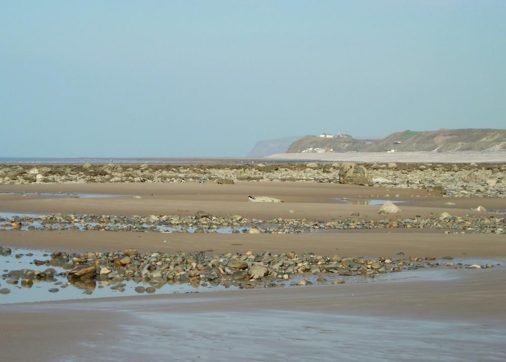 Drigg Dunes dog-friendly beach, Cumbria - Dog walks in Cumbria