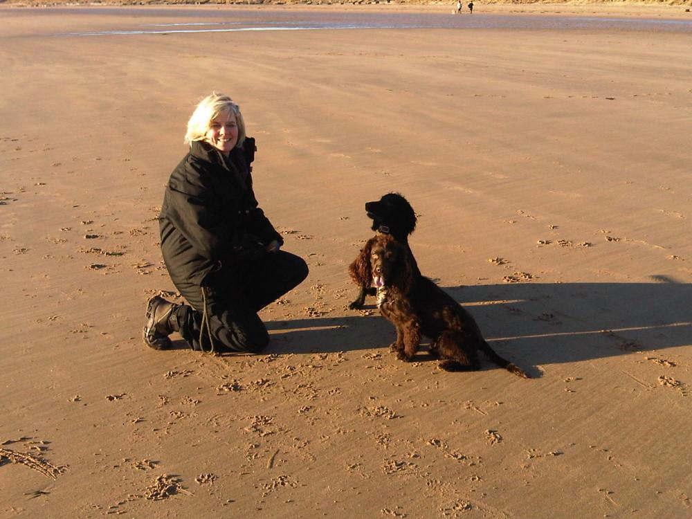 Alnmouth dog-friendly beach, Northumberland - Dog walks in Northumberland