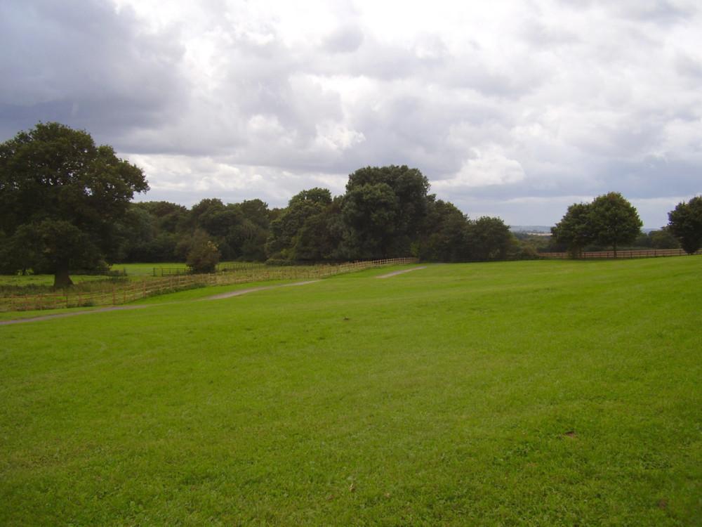 Battlefield Country Park dog walk, Leicestershire - Dog walks in Leicestershire