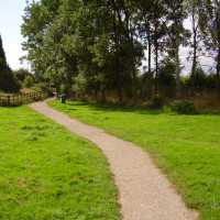 Country park dog walk near Ibstock, Leicestershire - Dog walks in Leicestershire