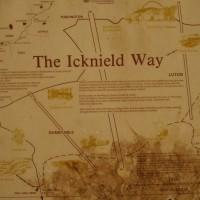 M1 Junction 11 dog walk on the Downs, Bedfordshire - Dog walks in Bedfordshire