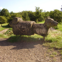 Melton Mowbray country park dog walk, Leicestershire