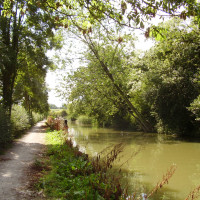 A6 - Waterside dog walk and dog-friendly pub, Leicestershire - Dog walks in Leicestershire
