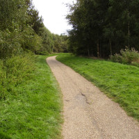 A6 country park dog walks near Blaby, Leicestershire - Dog walks in Leicestershire