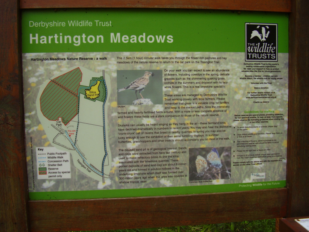 Hartington dog walk on the Tissington Trail, Derbyshire - Dog walks in Derbyshire