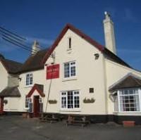 A339 dog walk and dog-friendly pub, Hampshire - Hampshire dog-friendly pub