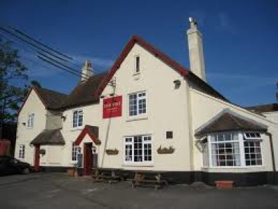 A339 dog walk and dog-friendly pub, Hampshire - Driving with Dogs