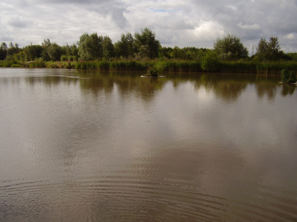 Rushcliffe Country Park dog walk, Nottinghamshire - Lake