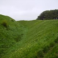 M4 Jct 15 dog walk on the Downs, Wiltshire - Wiltshire dog walk