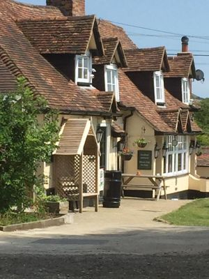 A20 dog-friendly pub and dog walk near Folkestone, Kent - Driving with Dogs