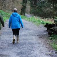 Cotehele Quay to Lower Kelly dog walk, Cornwall - 2018-04-07-5430.jpg