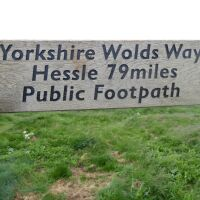 Country park walks for dogs and dolphin spotters, North Yorkshire - Yorkshire dog-friendly beaches and dog walks