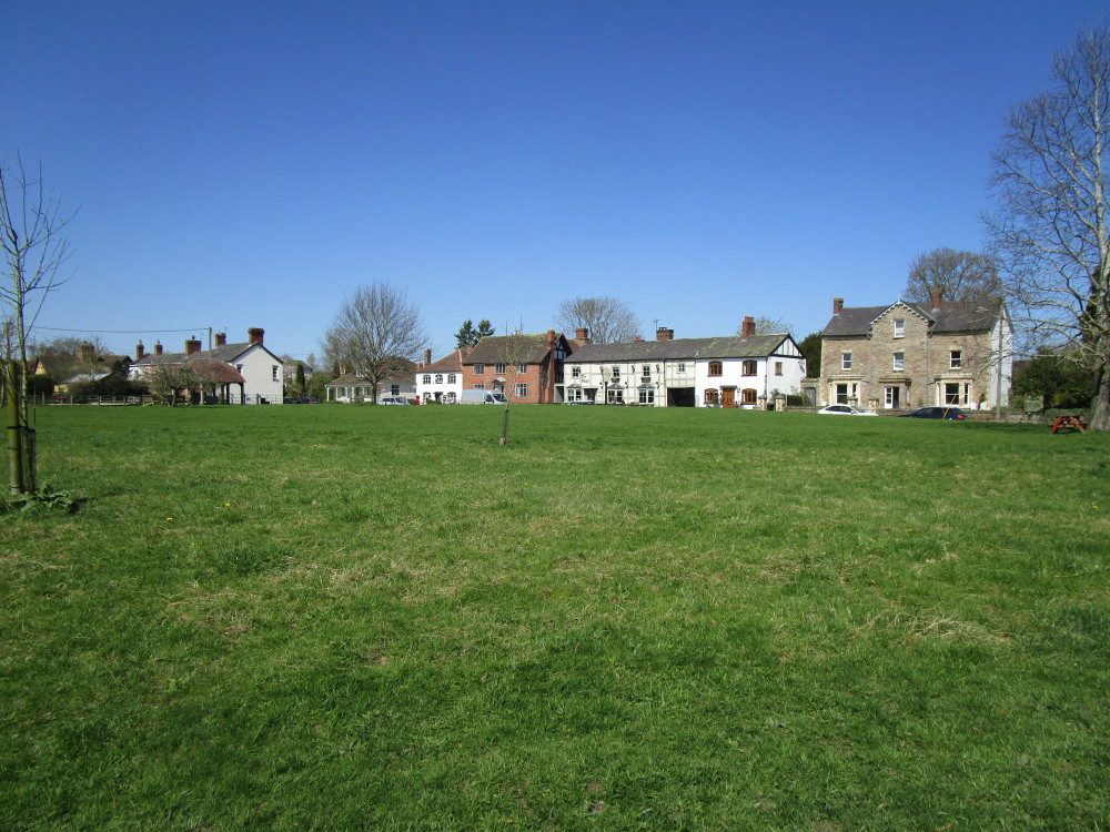 Village dog-friendly pub and dog walk, Herefordshire - Dog walks in Herefordshire
