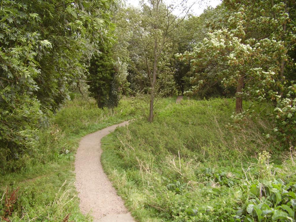 A1 dog walk and dog-friendly pub, Cambridgeshire - Dog walks in Cambridgeshire