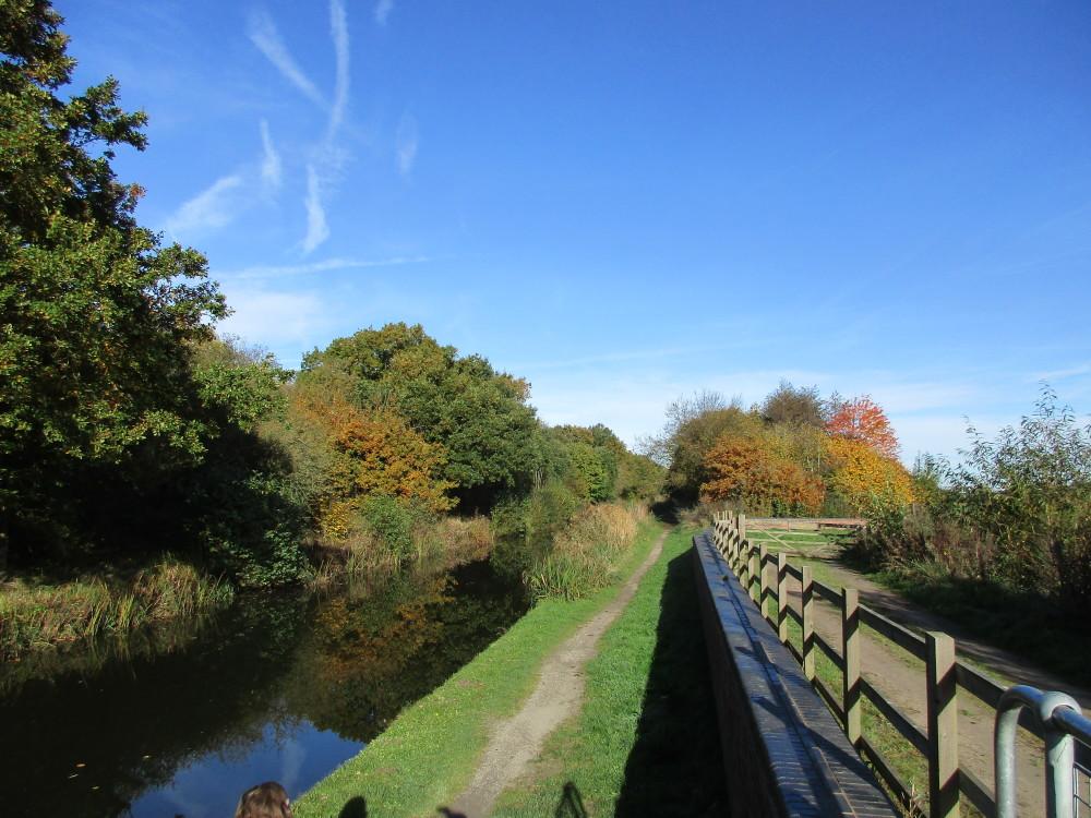 M42 Junction 9 waterside dog walk, Warwickshire - Dog walks in Warwickshire