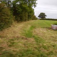 Laxton dog walk, Nottinghamshire - Dog walks in Nottinghamshire