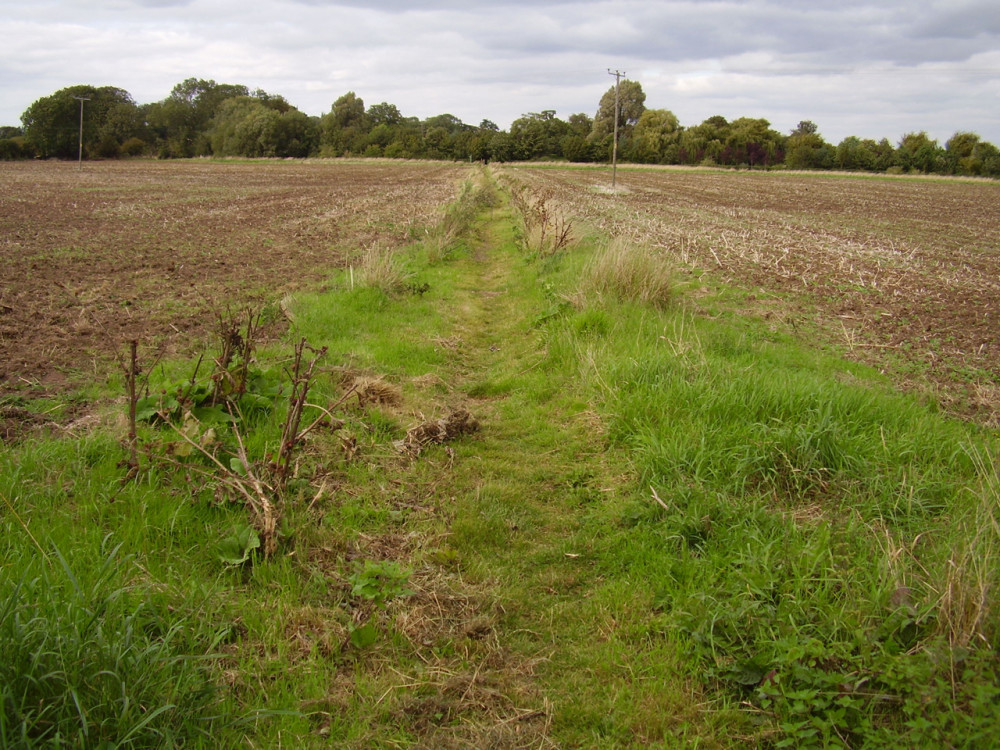 Viking Way dog walk from Marston, Lincolnshire - Dog walks in Lincolnshire