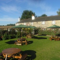 M3 Jct 7 dog-friendly village pub with large garden, Hampshire - Hampshire dog-friendly pub and dog walk