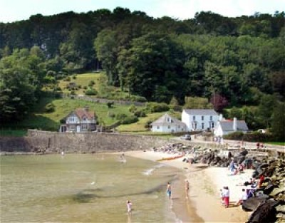 North Sands dog-friendly beach near Salcombe, Devon - Driving with Dogs