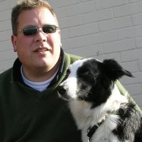 digitalinkjetman - Driving with Dogs