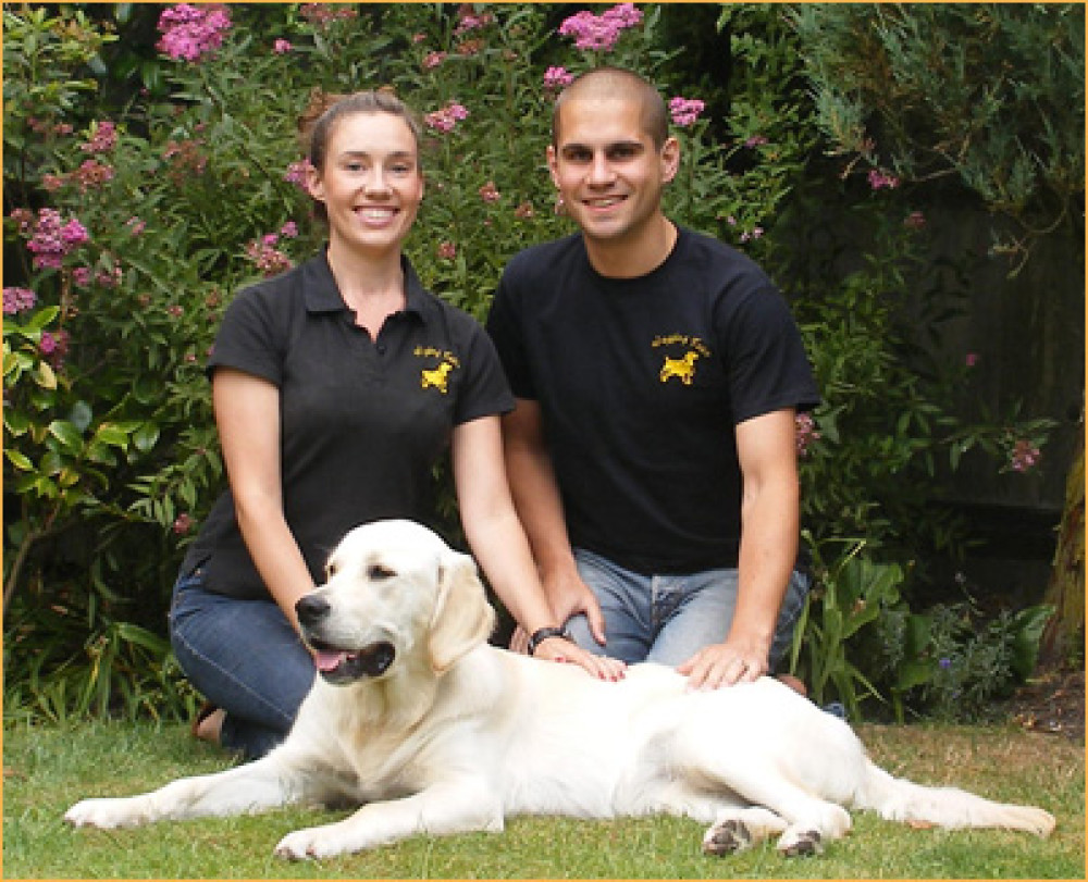 Wagging Tails, Hampshire - WaggingTails