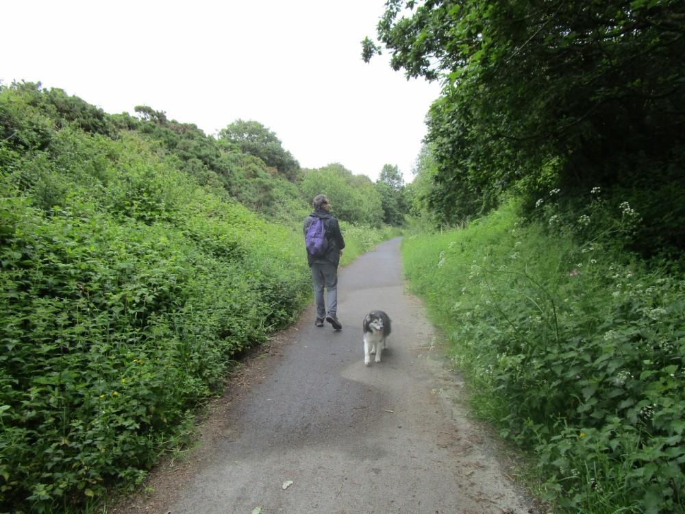 A361 dog-friendly pub and dog walk near Woolacombe, Devon - Devon dog walk and dog-friendly pub.JPG