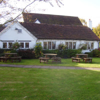Balsall Common dog-friendly pub and dog walk, West Midlands - Dog walks in the West Midlands