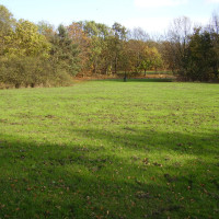 Leamington dog walks and dog-friendly pub, Warwickshire - Dog walks in Warwickshire