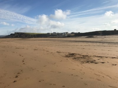 All year summer dog-friendly beach, Cornwall - Driving with Dogs