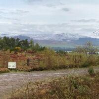 Skelbo Forest dog walk, Scotland - Skelbo 3.jpg