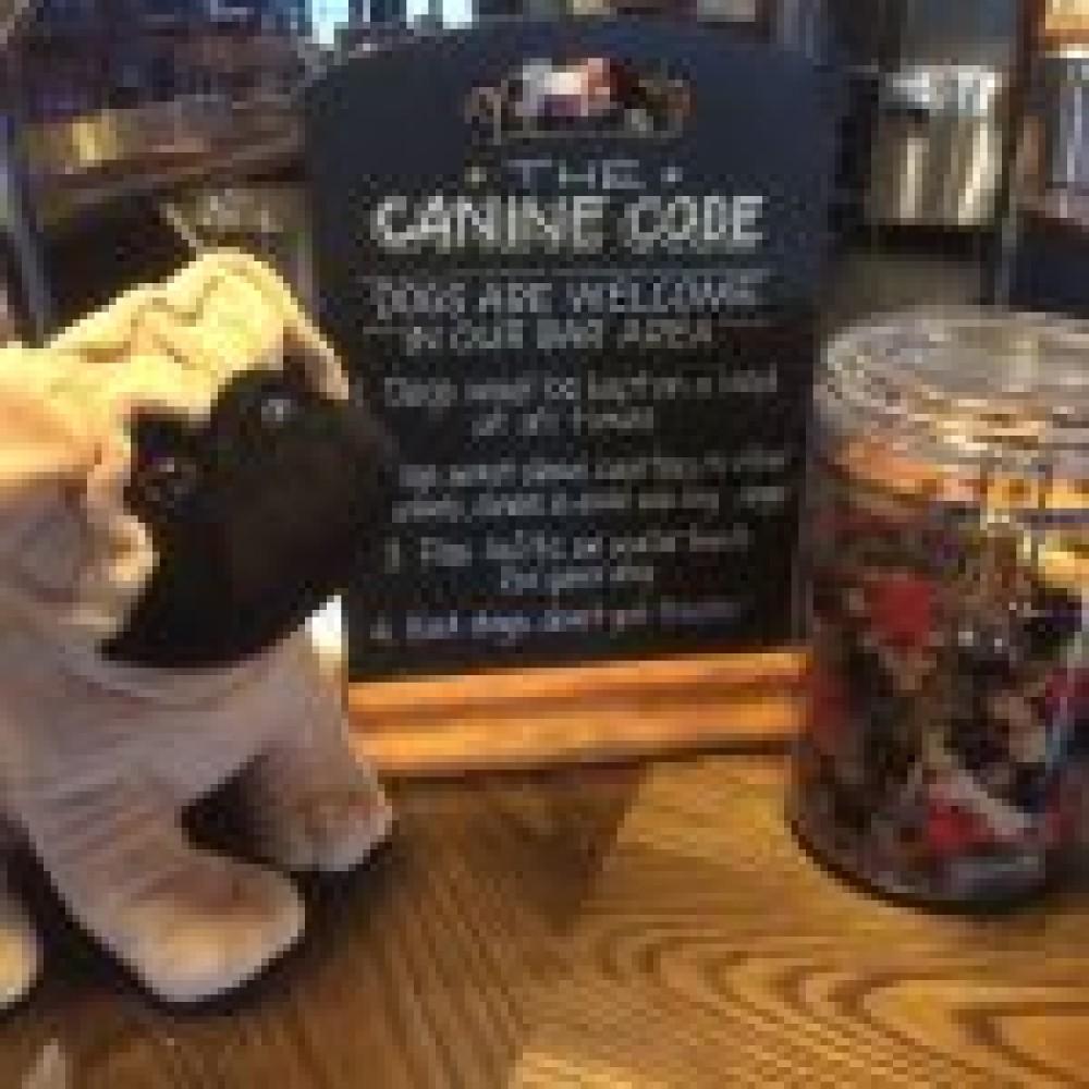 M56 dog-friendly pub, Cheshire - hornsmill-dogs.jpg