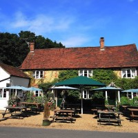 A272 dog walk in the Low Weald, West Sussex - Sussex dog-friendly pub and dog walk