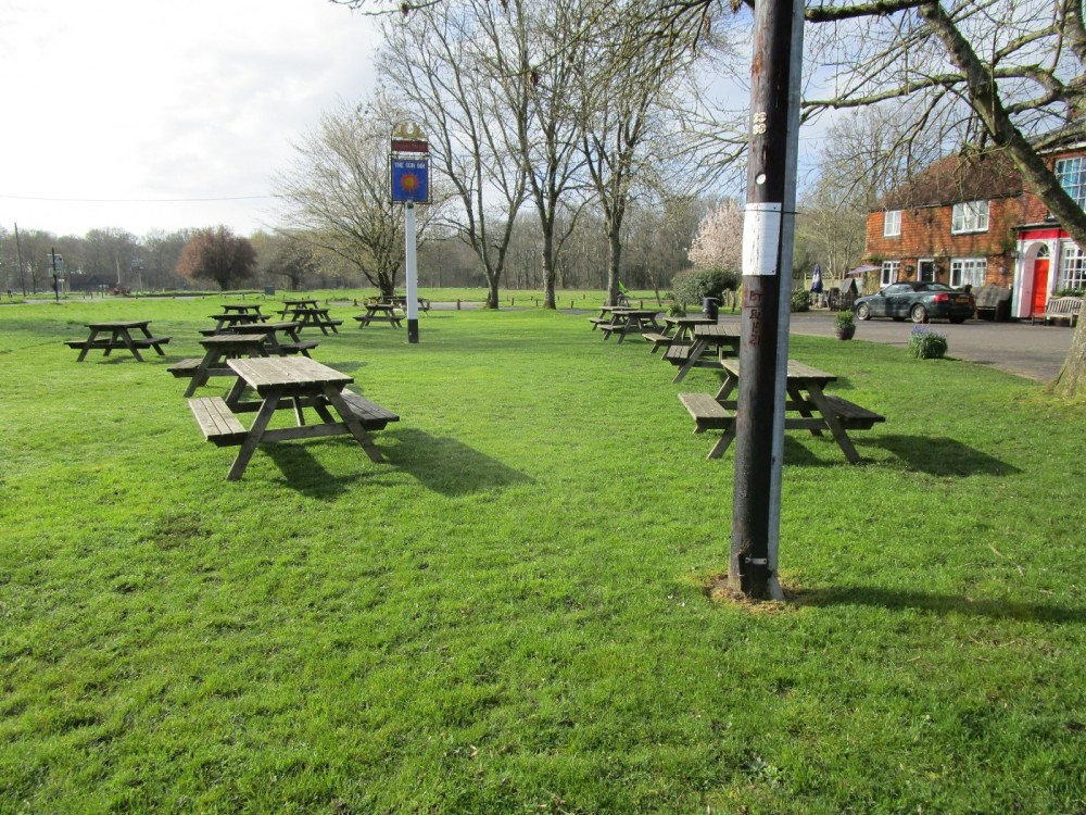 A281 Low Weald dog-friendly pub and dog walk, Surrey - Sussex dog walks and dog-friendly pubs.JPG.JPG