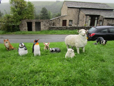 Dales dog-friendly pub and dog walk, North Yorkshire - Driving with Dogs