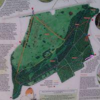 Wigginton Wood Dog Walk - includes part of The Ridgeway, Hertfordshire - IMAG0014_LI.jpg