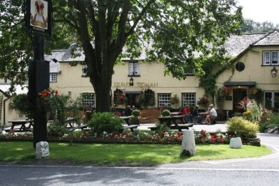 Wareham Forest and dog-friendly pub, Dorset - Driving with Dogs