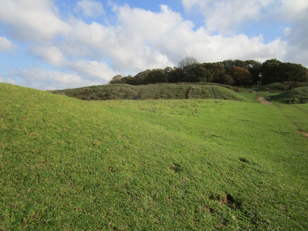 A350 Big dog walk in prehistory, Dorset - IMG_6216.JPG