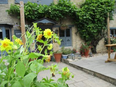 Dog-friendly inn and dog walk near Witney, Oxfordshire - Driving with Dogs