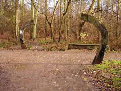 Bourne Woods dog walk, Lincolnshire - Driving with Dogs