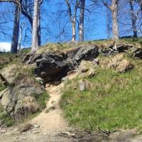 Hardcastle Crags dog walks, West Yorkshire - 20190411_145122.jpg