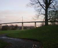M8 Junction 30 dog walk in Erskine, near Glasgow, Scotland - Dog walks in Scotland