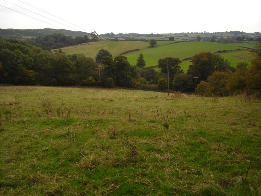M1 Junction 29 Lady Spencer's dog-walk with cafe or inn, Derbyshire - Dog walks in Derbyshire