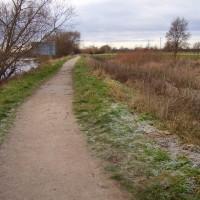 Trent Lock dog walk, near Long Eaton, Nottinghamshire - Dog walks in Nottinghamshire