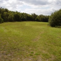 M1 - Tibshelf Services dog walk, Nottinghamshire - Dog walks in Nottinghamshire